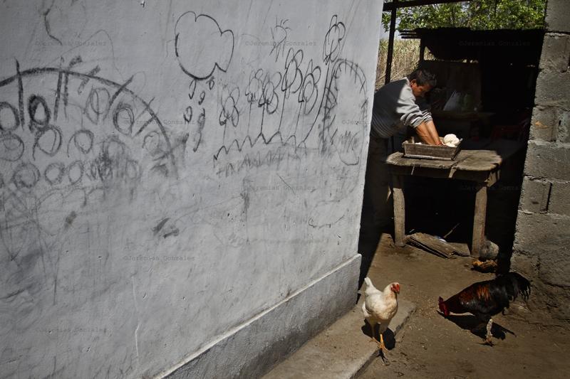 http://jeremiasgonzalez.com/files/gimgs/50_agricultura-familiar05bd.jpg