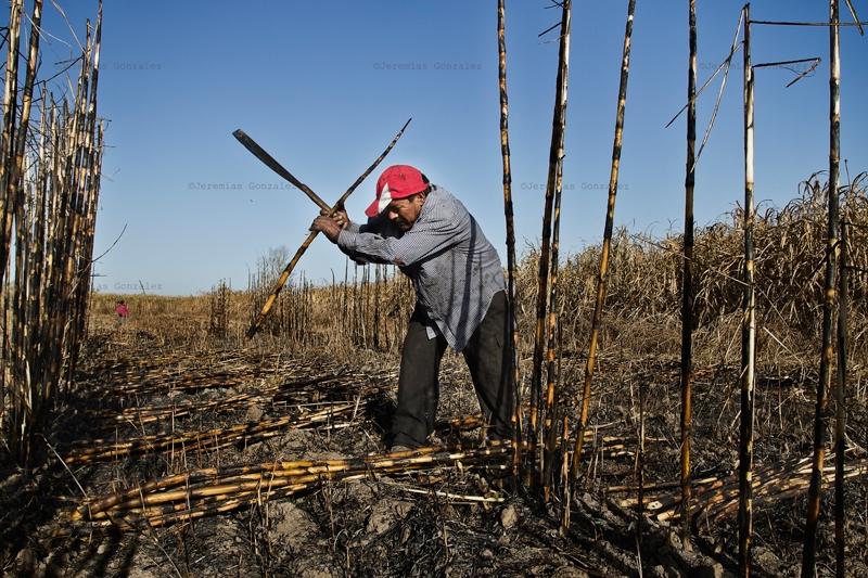 http://jeremiasgonzalez.com/files/gimgs/50_agricultura-familiar13bd.jpg