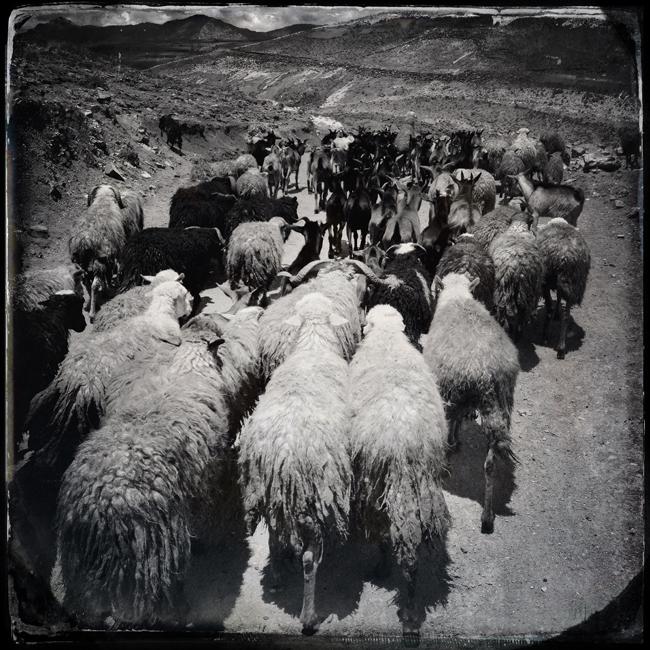 http://jeremiasgonzalez.com/files/gimgs/72_a-bolivian-mobile-diary33.jpg
