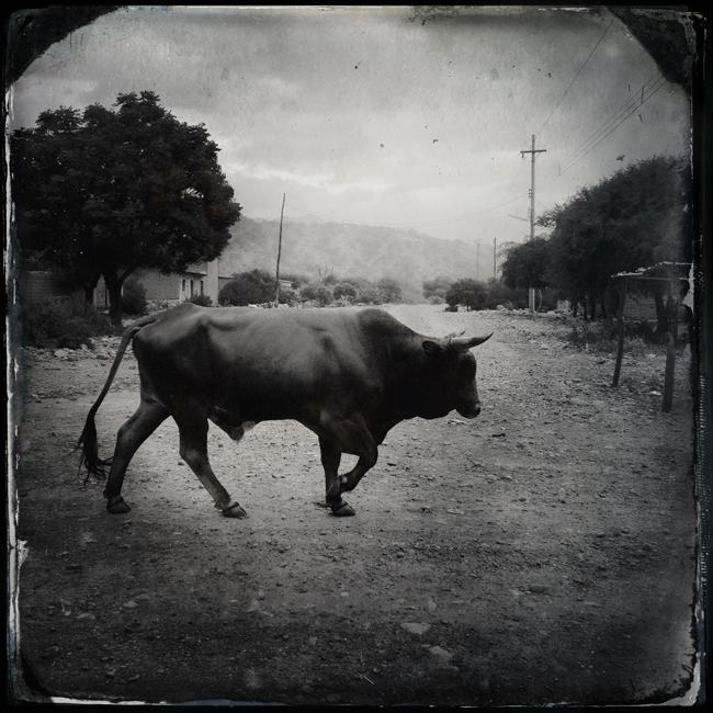 http://jeremiasgonzalez.com/files/gimgs/72_a-bolivian-mobile-diary36.jpg